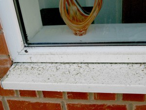 oliver window cleaner sill before clean