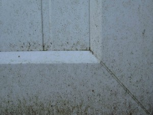oliver window cleaner before clean door